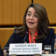 Director-General/Executive Director of the United Nations Office at Vienna